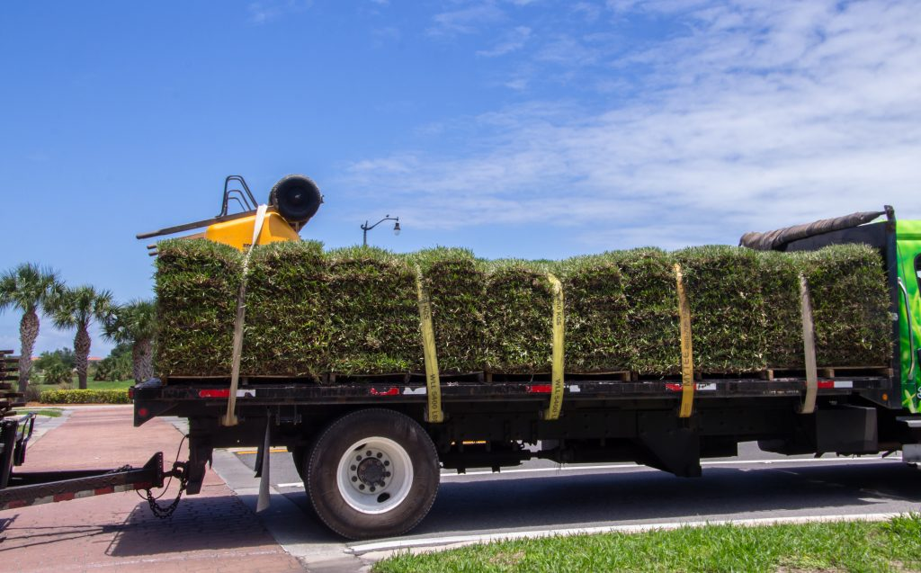 Sod delivery service